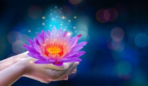 Online Reiki Classes via ZOOM